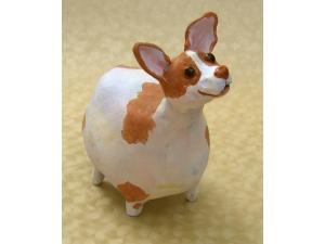 Brown and White Chihuahua