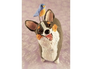 Corgi with Bluebird
